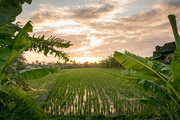 Bali Travel Photography - Jack and Jane Photography_0009