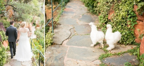 Shepstone Gardens Wedding - Jack and Jane Photography - Johan & Lilienne_0072