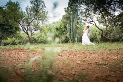 Green Leaves Wedding - Jack and Jane Photography - Christian & Michelle_0067