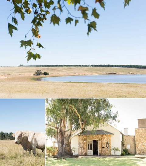 Florence Guest Farm Wedding - Jack and Jane Photography - Paul & Whitney_0001